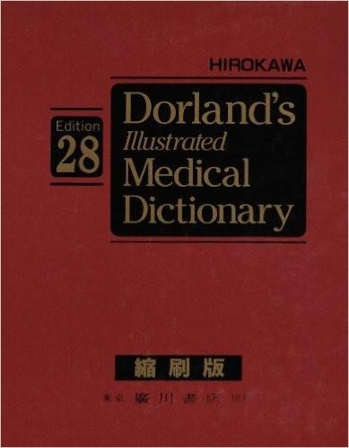 ドーランド図説医学大辞典[第28版] 11